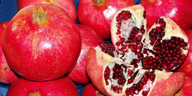 Israel Helping To Boost Pomegranate Yield In India Israel News