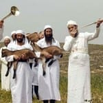 Paschal Lamb Sacrificed in Jerusalem (PROPHETIC PHOTOS)