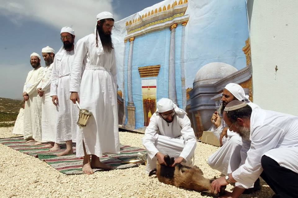 Preparing to make the offering. (Photo: The Temple Institute)