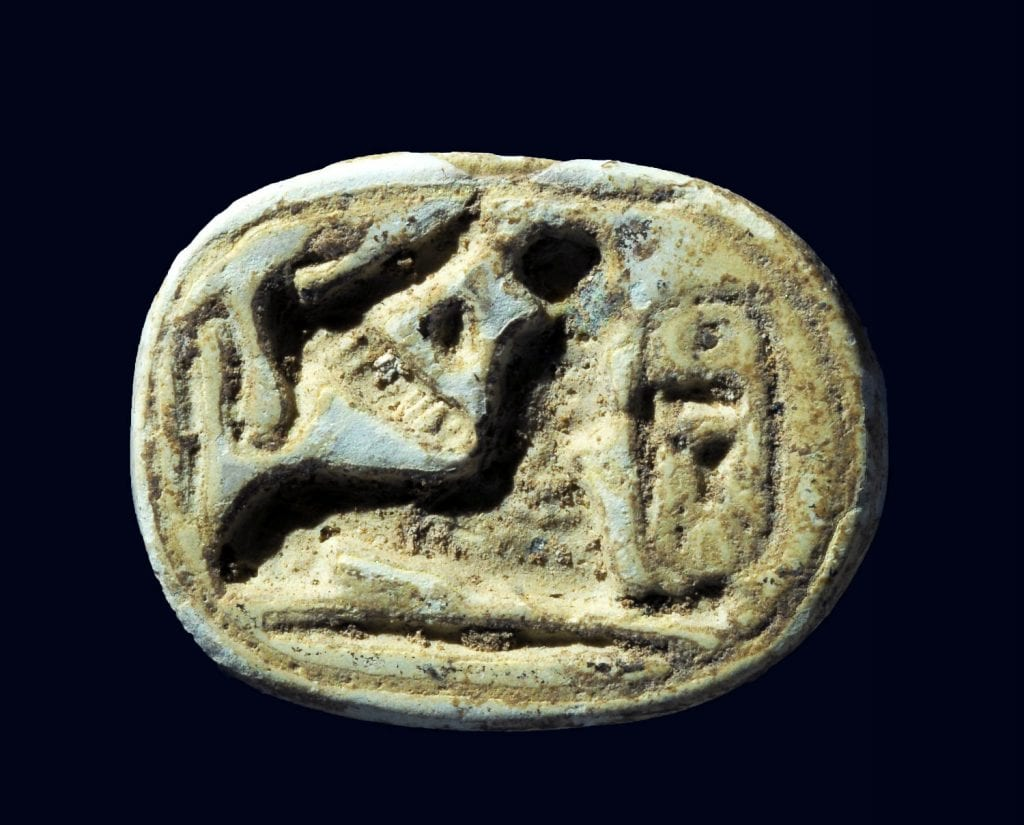 A scarab seal of the Egyptian pharaoh Thutmose III. A sphinx is crouching near the pharaoh's name. (Photo: Clara Amit/ Israel Antiquities Authority)