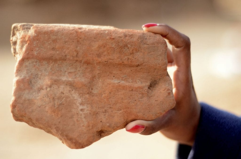 A Fragment of a basin used by the ancient Egyptians to produce beer. (Photo: Yoli Shwartz/ Israel Antiquities Authority)