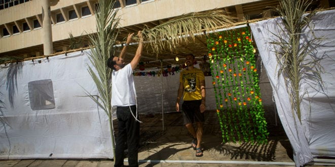 Israelis putting a roof of s'chach on their sukkah in Tel Aviv. (Photo: Miriam Alster/ Flash90)