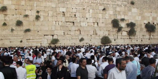 Thousands of people arrived hours before the start of Hakhel at the Western Wall, September 30, 2015. (Photo: Adam Eliyahu Berkowitz/ Breaking Israel News)