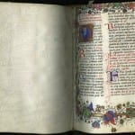 Getting Under the Skin of Medieval Bible Mystery