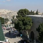 Holiday Marred by Palestinian Extremists Burning Christmas Tree