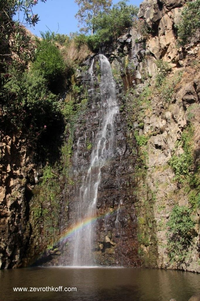 zev rothkoff golan heights waterfall gilboane