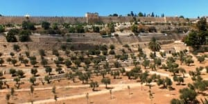 Mount of Olives with the Old City Walls in the background. (Photo: Rotem Harel/Wikimedia Commons)