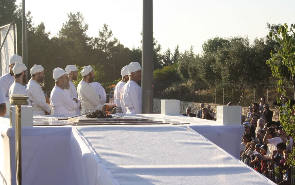 Kohanim stand by the altar as the offerings burn. (Adam Prop/Courtesy)
