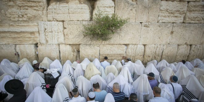 Jewish worshippers cover themselves with prayer shawls as they pray in front of the Western Wall, Judaism's holiest prayer site, in Jerusalem's Old City, during the Cohen Benediction priestly blessing at the Jewish holiday of Passover which commemorates the Israelites' hasty departure from Egypt. April 25, 2016. (Photo: Yonatan Sindel/Flash90)