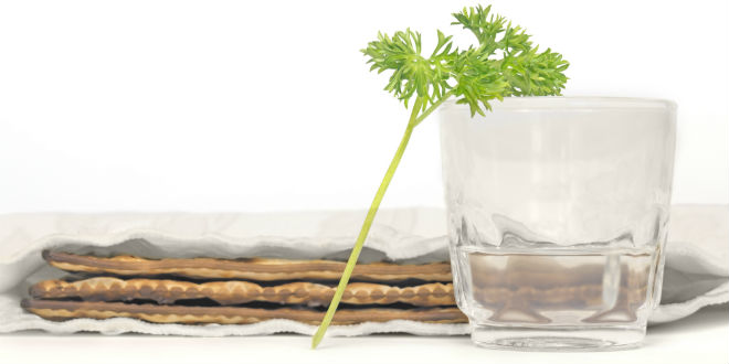 A piece of parsley is to be dipped in the salt water. (Photo: Shutterstock)