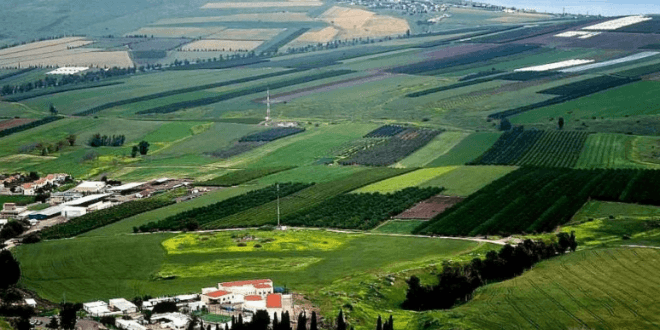Galilee landscape (Photo: Aryeh Green)