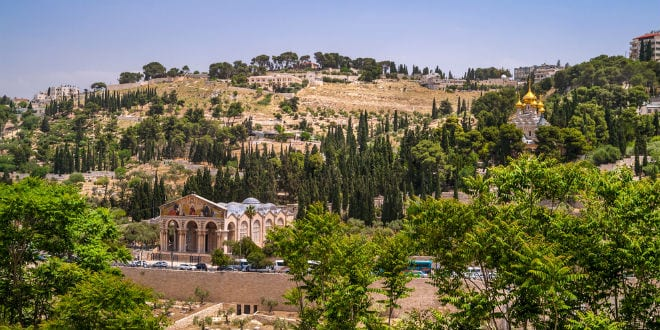 Mount of Olives in Jerusalem. (Shutterstock)