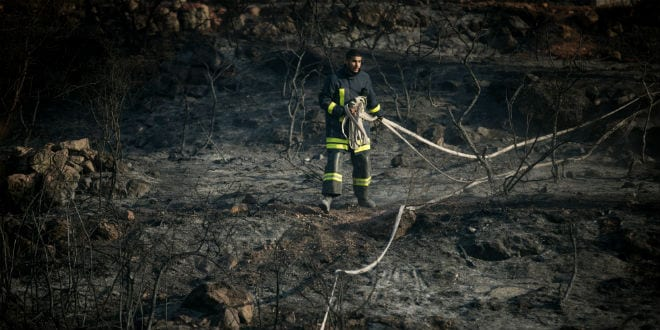 Fire fighters try to extinguish a forest fire which broke out in the forest near the Nataf nature reserve, outside of Jerusalem on November 23, 2016. (Yonatan Sindel/Flash90)