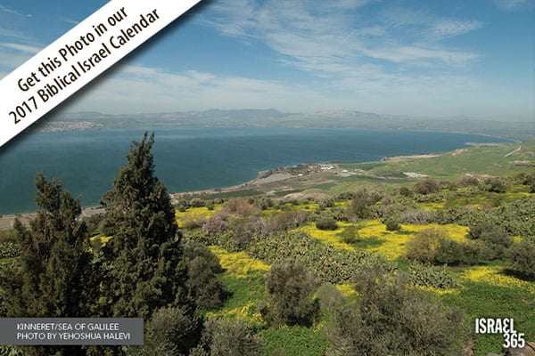 The Sea of Galilee or Kinneret in Hebrew (Yehoshua Halevi)
