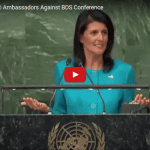 Nikki Haley Drops Truth Bombs on Anti-BDS Conference at UN