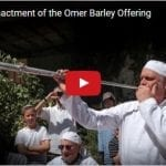 Historic Reenactment of the Omer Barley Offering