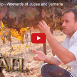Breathtaking Video of Fulfillment of Biblical Prophecy in Judea and Samaria