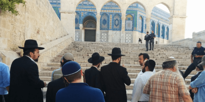 Jew Detector: After Temple Mount 'Victory,' Arabs Set Sights On Western
