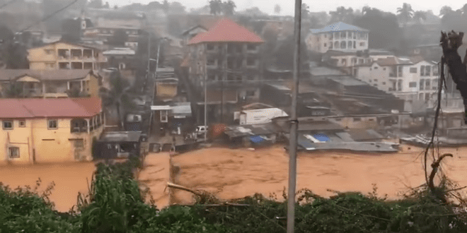 Following Deadly Flooding and Landslide, Israel Sends Aid to Sierra Leone