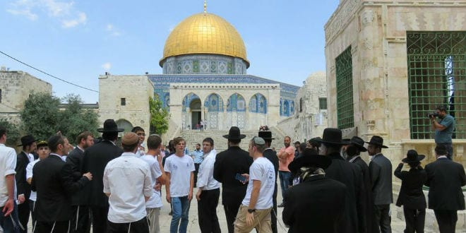 Jew Detector: Rise In Jewish Visitors On Temple Mount Could Be Pretext