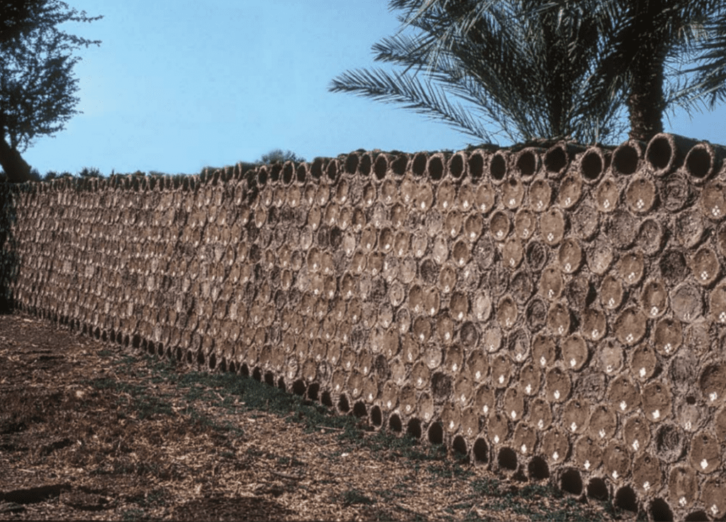 World's Oldest Beehives Farmed in Israel at Time of ...