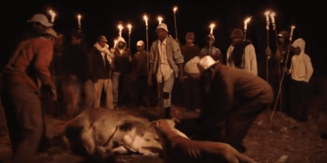 """""""Dance With the Dead"""" Ritual Threatens to Turn African Plague Into Global Pandemic [WATCH]"""