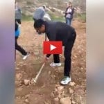 Planting an Olive Grove in the Biblical Heartland