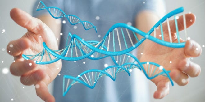 DNA, Like Wires Can Conduct Electric Current Israeli Study Finds