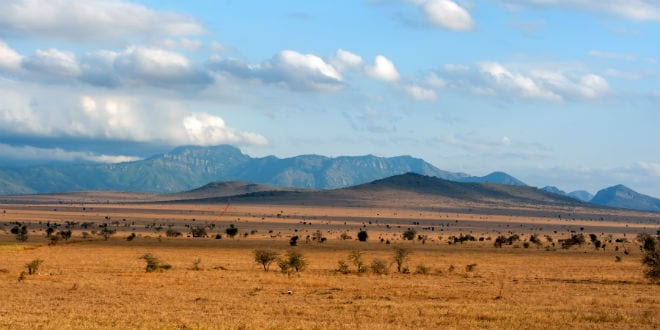Ancient Grazing Did Not Deplete Land, Made it More Fertile
