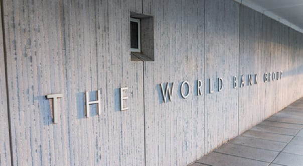 The World Bank is Ignoring the Elephant in the Room