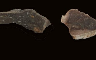 Ancient Hominins Living in the Lower Paleolithic Era in What is Today the Land of Israel Used Fire to Make Stone Tools