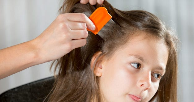 Kids with Lice Shouldn't be Sent Home from School, says Israeli Parasitologist