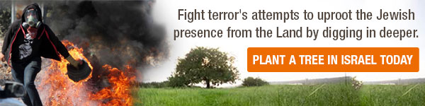 Fight terror by planting trees in Israel
