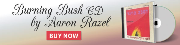 Burning Bush CD by Aaron Razel. Buy now!