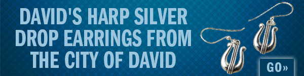 David's Harp Silver Drop Earrings from the City of David. Go!