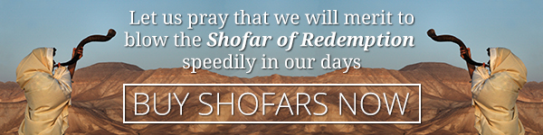 Get ready - buy your shofar today!