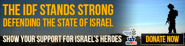 Support the IDF